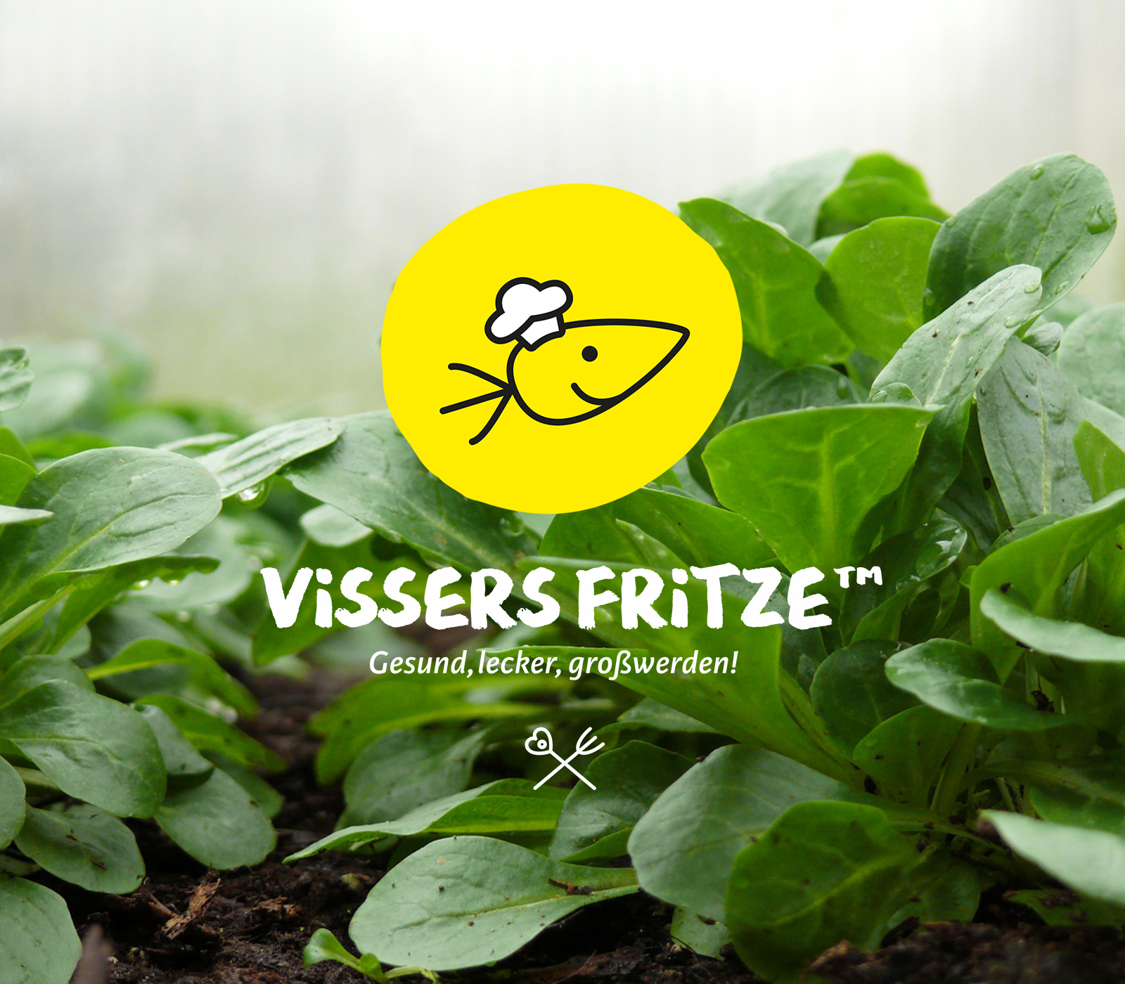 INTRO-MOBIL-Corporate-Design-Vissers-Fritze-WERTBLICK